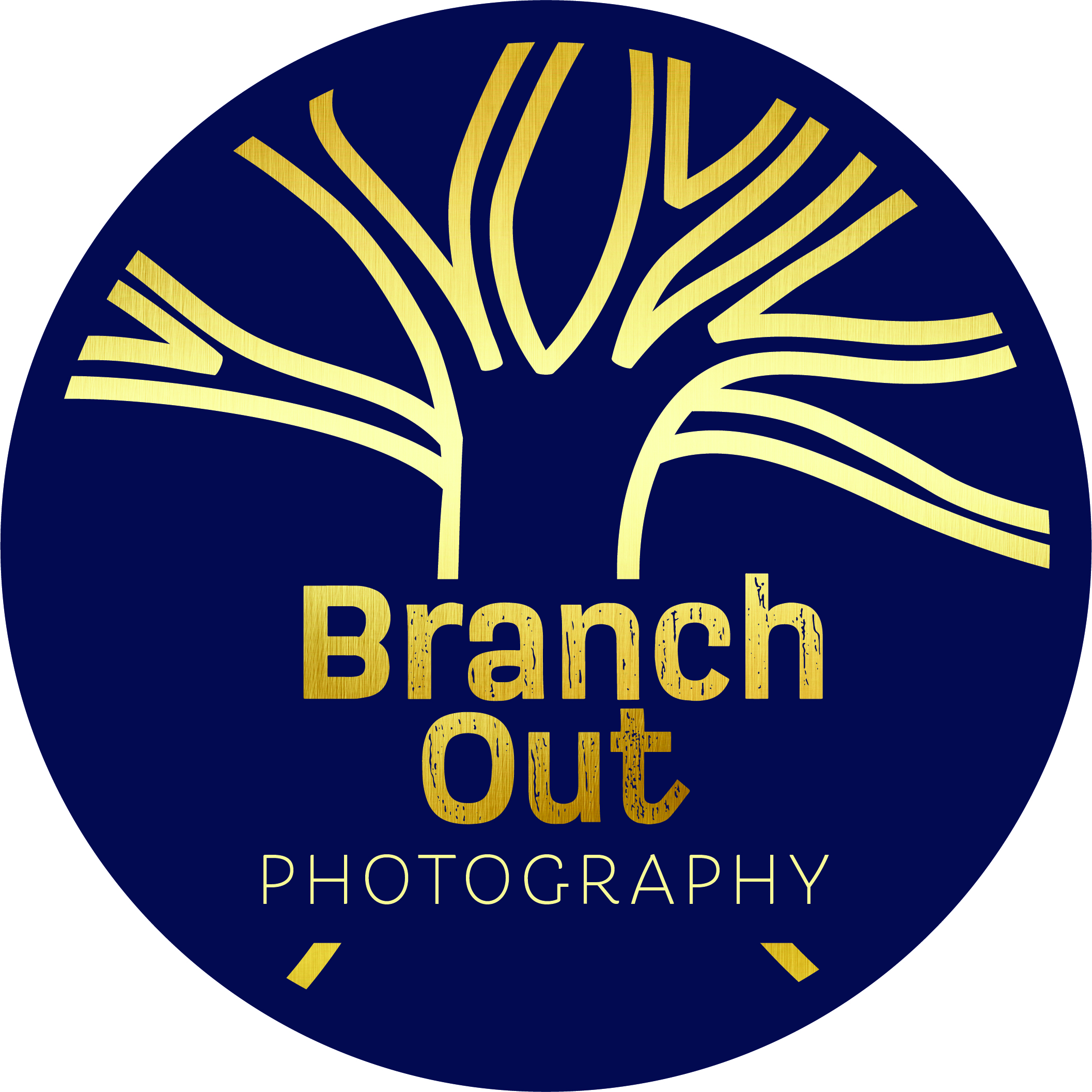 More info on Branch Out Photography